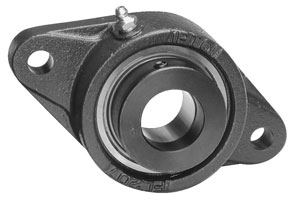 picture of Cast 2 bolt flange